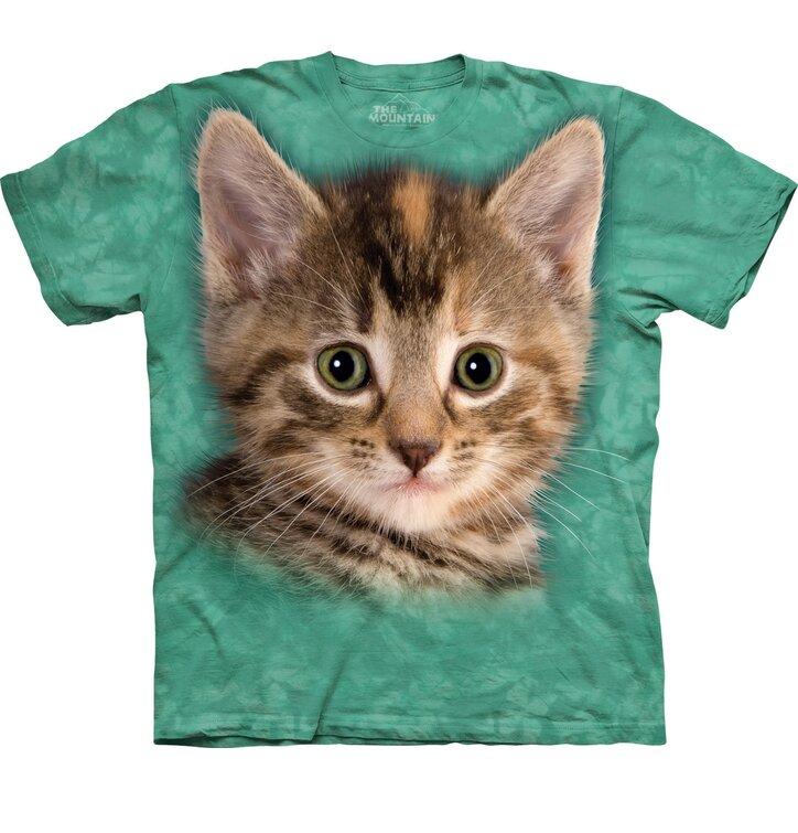 Kitten Adult 20